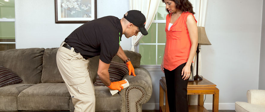 Solon, OH carpet upholstery cleaning